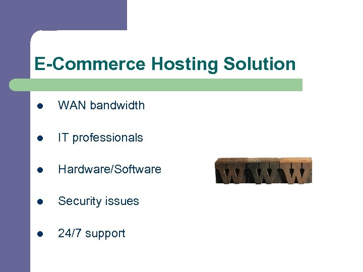 E-Commerce Hosting Solution l WAN bandwidth l IT professionals l Hardware/Software l Security issues