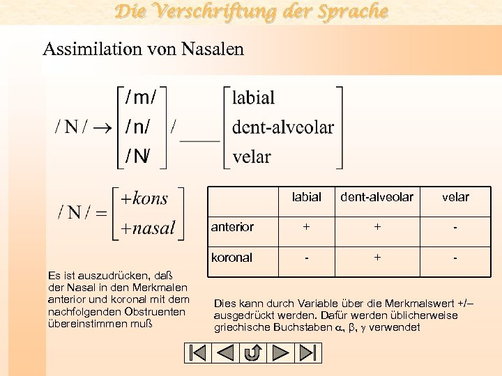 Die Verschriftung der Sprache Assimilation von Nasalen labial velar anterior + + - koronal