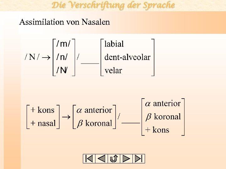 Die Verschriftung der Sprache Assimilation von Nasalen