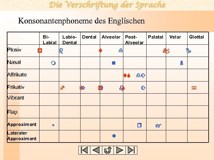 Die Verschriftung der Sprache Konsonantenphoneme des Englischen Bi. Labial Plosiv Nasal p Labio. Dental