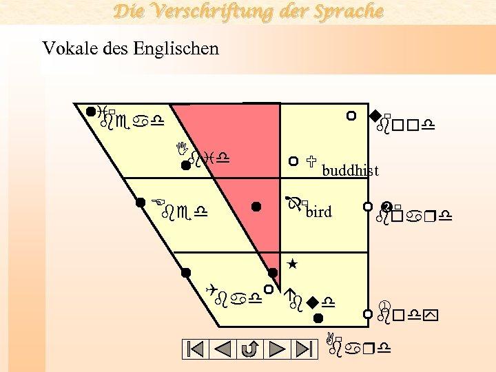 Die Verschriftung der Sprache Vokale des Englischen i bead u bood I bid E
