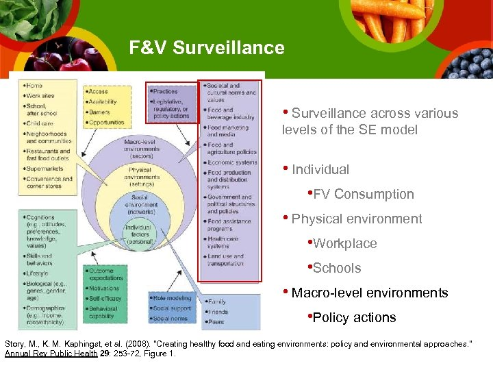 F&V Surveillance • Surveillance across various levels of the SE model • Individual •