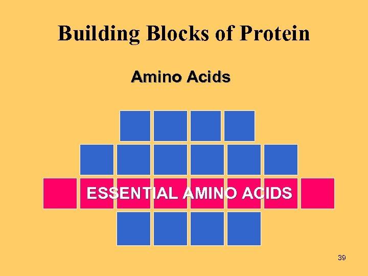 Building Blocks of Protein Amino Acids ESSENTIAL AMINO ACIDS 39