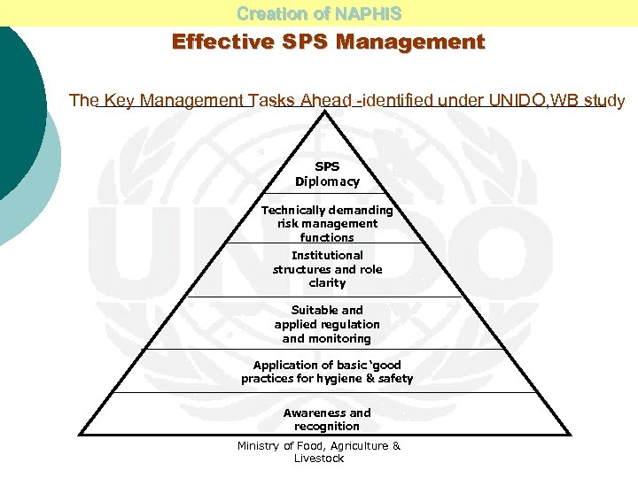 Creation of NAPHIS Effective SPS Management The Key Management Tasks Ahead -identified under UNIDO,