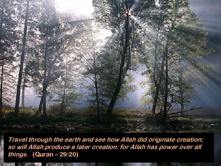 Travel through the earth and see how Allah did originate creation; so will Allah