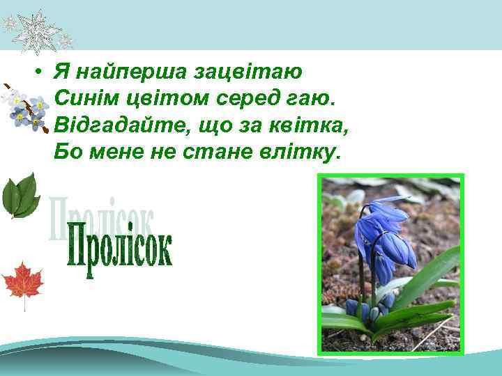 • Я найперша зацвітаю Синім цвітом серед гаю. Відгадайте, що за квітка, Бо