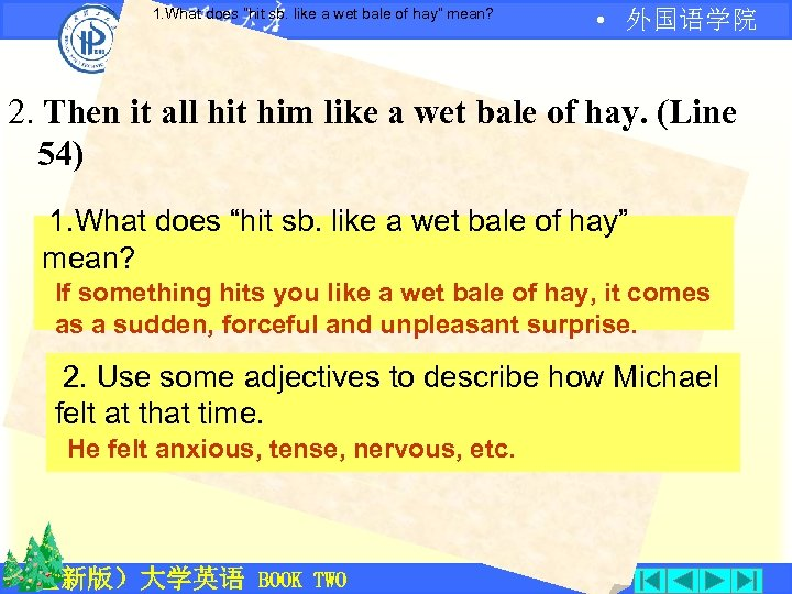 "1. What does ""hit sb. like a wet bale of hay"" mean? • 外国语学院"