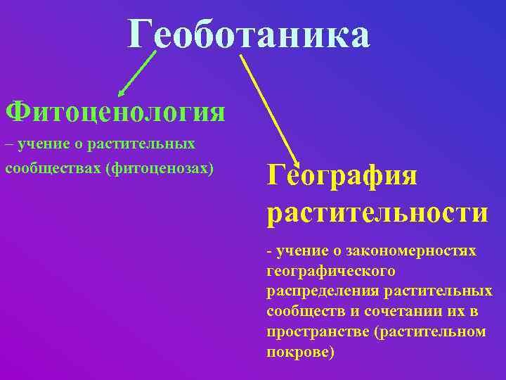 Геоботаника Фитоценология – учение о растительных сообществах (фитоценозах) География растительности - учение о закономерностях
