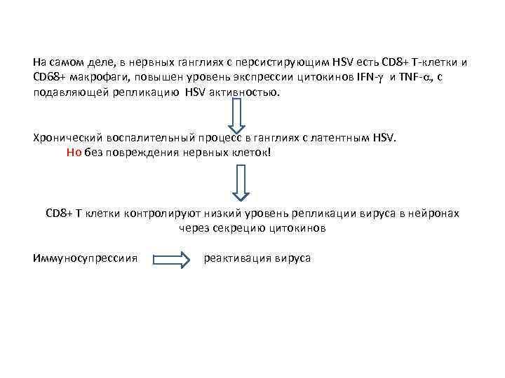 На самом деле, в нервных ганглиях с персистирующим HSV есть CD 8+ Т-клетки и