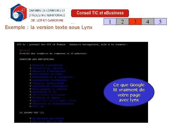 Exemple : la version texte sous Lynx 1 2 3 Ce que Google lit