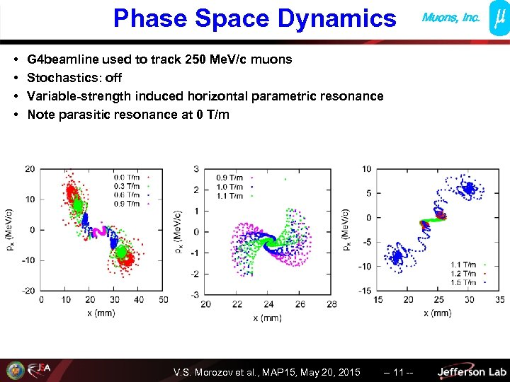 Phase Space Dynamics • • G 4 beamline used to track 250 Me. V/c