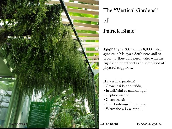 """The """"Vertical Gardens"""" of Patrick Blanc Epiphany: 2, 500+ of the 8, 000+ plant"""