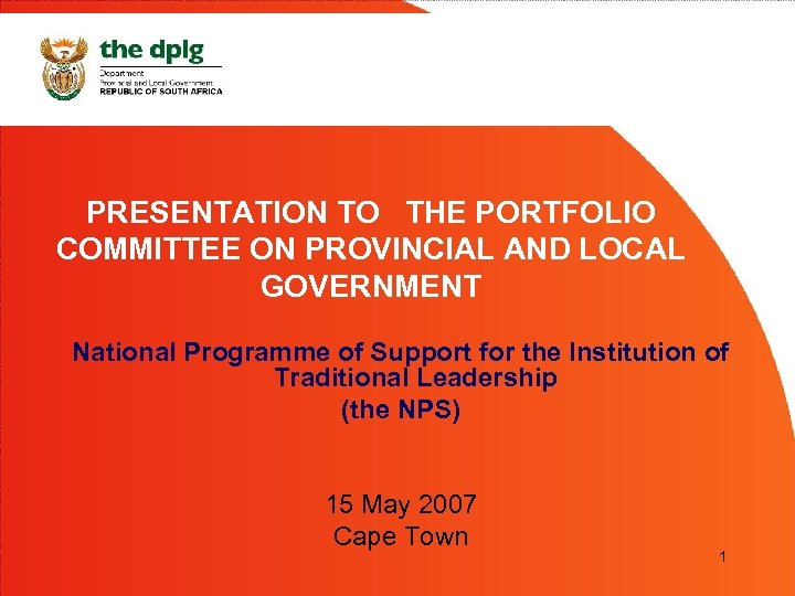 PRESENTATION TO THE PORTFOLIO COMMITTEE ON PROVINCIAL AND LOCAL GOVERNMENT National Programme of Support