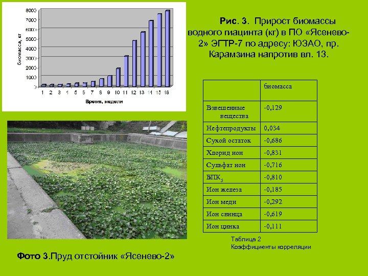 Рис. 3. Прирост биомассы водного гиацинта (кг) в ПО «Ясенево 2» ЭГТР-7 по адресу: