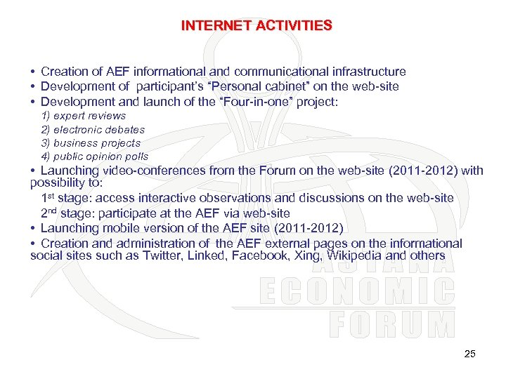 INTERNET ACTIVITIES • Creation of AEF informational and communicational infrastructure • Development of participant's