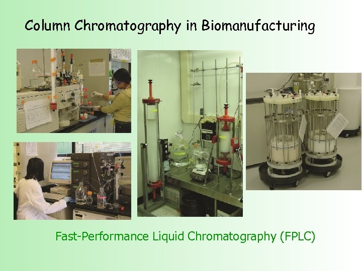 Column Chromatography in Biomanufacturing Fast-Performance Liquid Chromatography (FPLC)