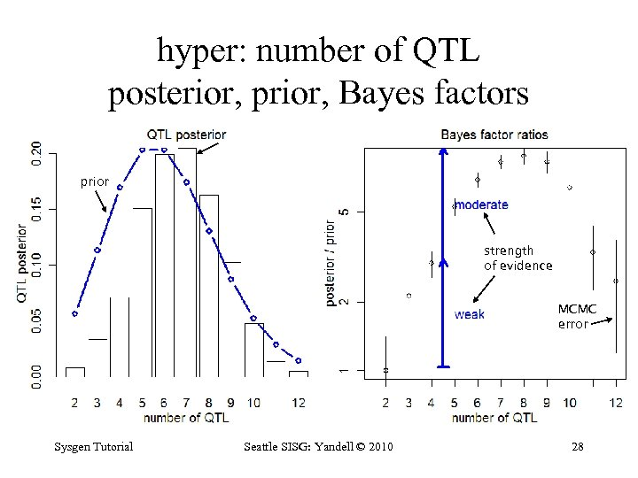 hyper: number of QTL posterior, prior, Bayes factors prior strength of evidence MCMC error