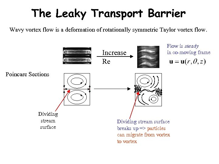 The Leaky Transport Barrier Wavy vortex flow is a deformation of rotationally symmetric Taylor