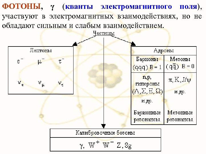 ФОТОНЫ, γ (кванты электромагнитного поля), участвуют в электромагнитных взаимодействиях, но не обладают сильным и
