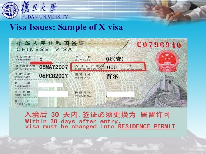 Visa Issues: Sample of X visa