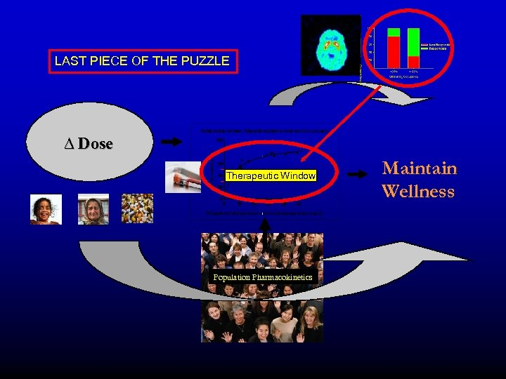 LAST PIECE OF THE PUZZLE ∆ Dose Therapeutic Window Population Pharmacokinetics Maintain Wellness