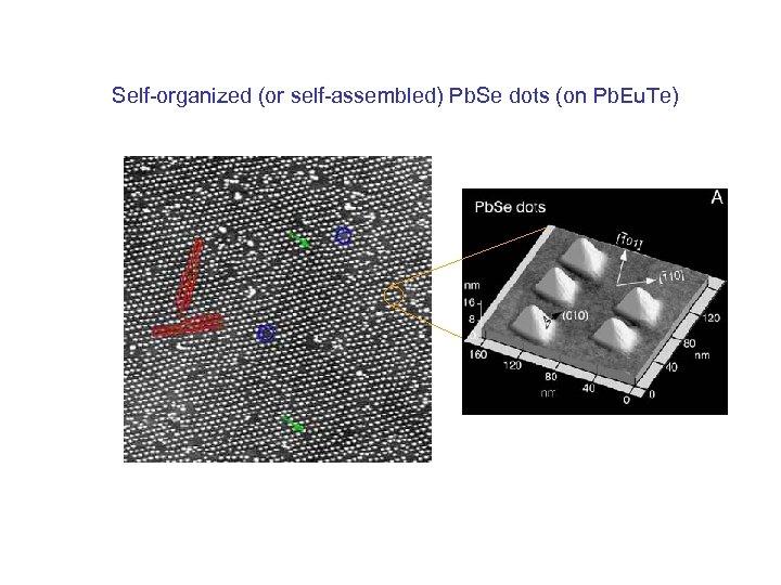 Self-organized (or self-assembled) Pb. Se dots (on Pb. Eu. Te)
