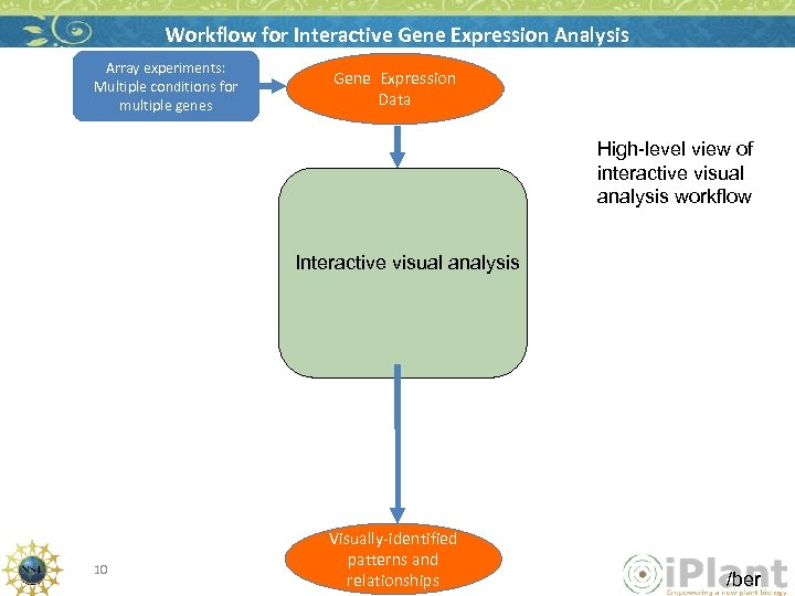 Workflow for Interactive Gene Expression Analysis Array experiments: Multiple conditions for multiple genes Gene