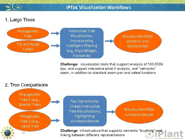 i. PTo. L Visualization Workflows 1. Large Trees Phylogenetic Tree Tip and Node Labels