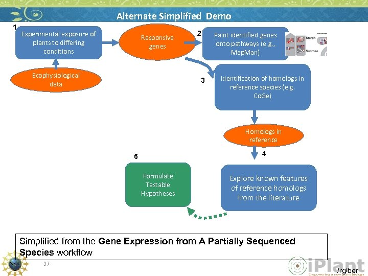 Alternate Simplified Demo 1 Experimental exposure of plants to differing conditions Responsive genes Ecophysiological