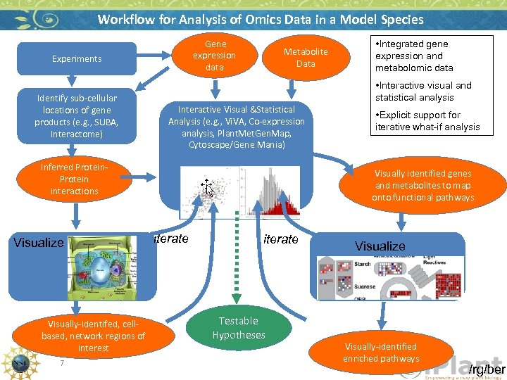 Workflow for Analysis of Omics Data in a Model Species Gene expression data Experiments