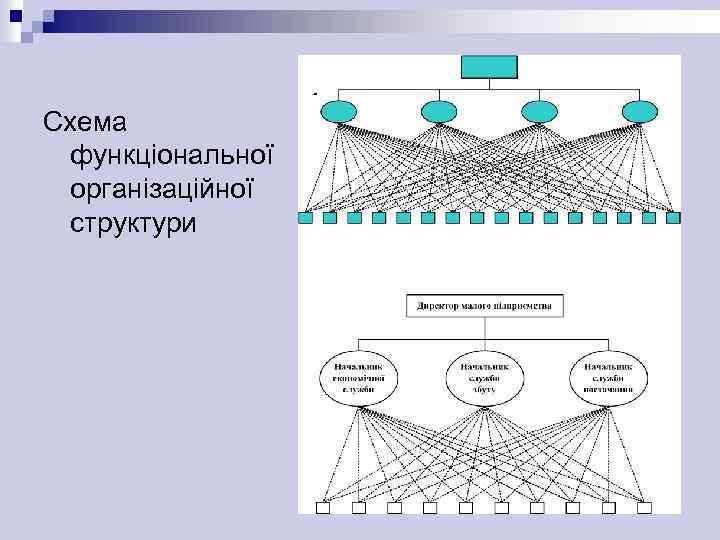 Схема функціональної організаційної структури