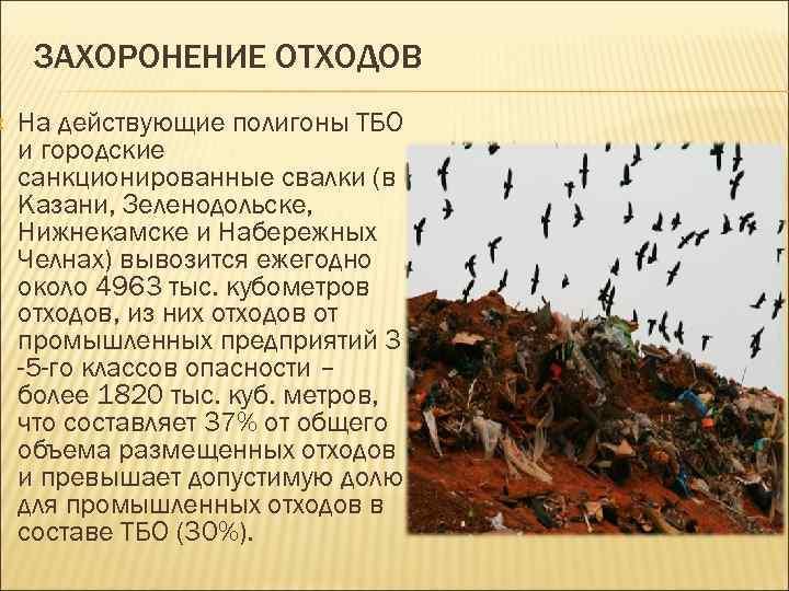 ЗАХОРОНЕНИЕ ОТХОДОВ На действующие полигоны ТБО и городские санкционированные свалки (в Казани, Зеленодольске,