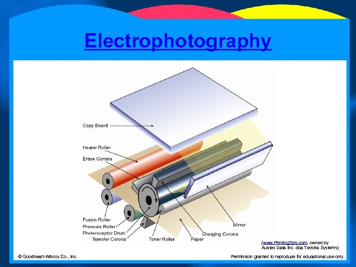 Electrophotography (www. Printing. Tips. com, owned by Austec Data Inc. dba Tecstra Systems) ©
