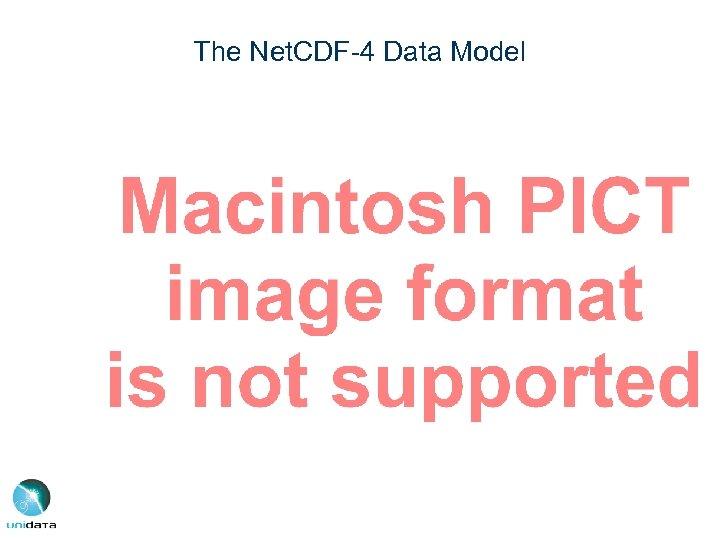 The Net. CDF-4 Data Model