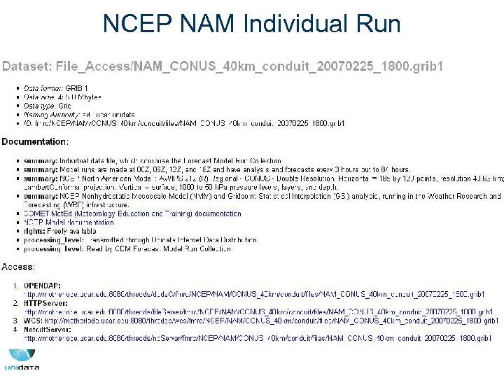 NCEP NAM Individual Run