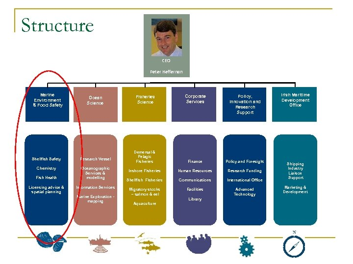 Structure CEO Peter Heffernan Marine Environment & Food Safety Ocean Science Shellfish Safety Research