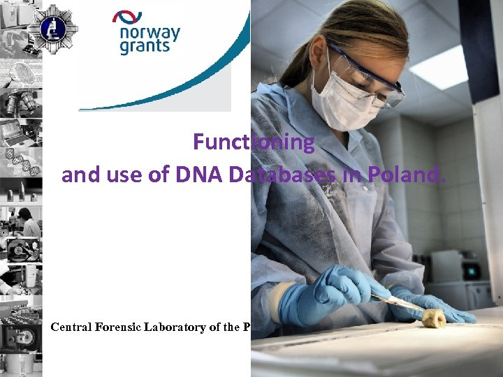 Functioning and use of DNA Databases in Poland. Central Forensic Laboratory of the Police