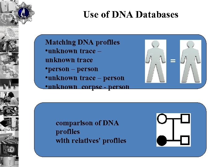 Use of DNA Databases Matching DNA profiles • unknown trace – unknown trace •