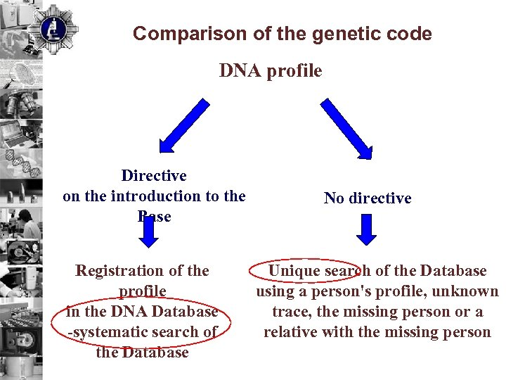 Comparison of the genetic code DNA profile Directive on the introduction to the Base