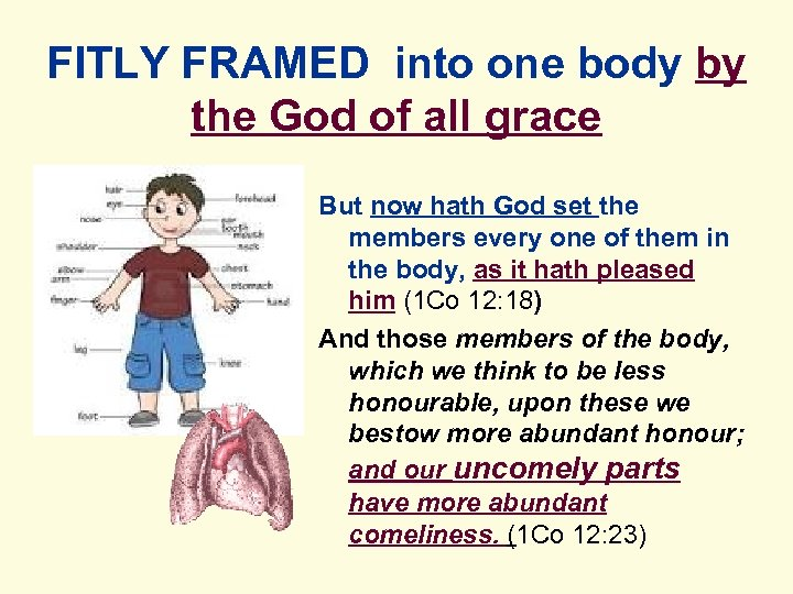FITLY FRAMED into one body by the God of all grace But now hath