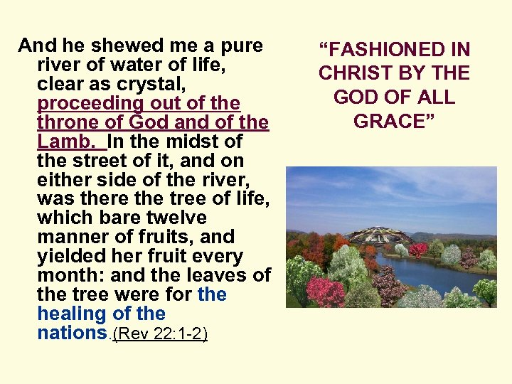 And he shewed me a pure river of water of life, clear as crystal,
