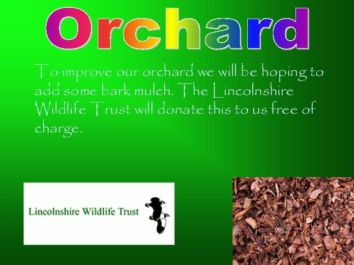 To improve our orchard we will be hoping to add some bark mulch. The