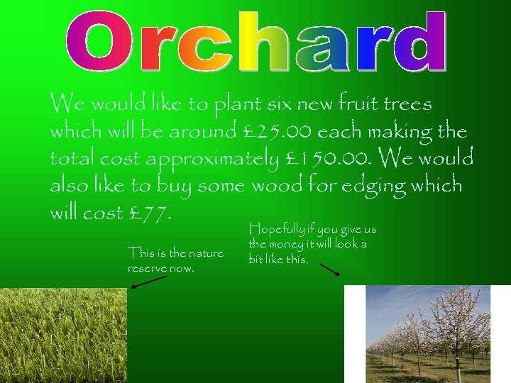 We would like to plant six new fruit trees which will be around £