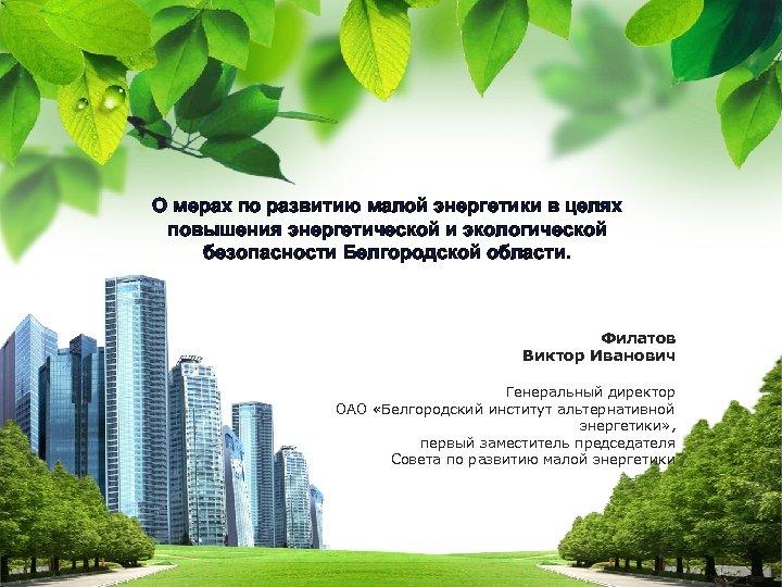 О мерах по развитию малой энергетики в целях повышения энергетической и экологической безопасности Белгородской