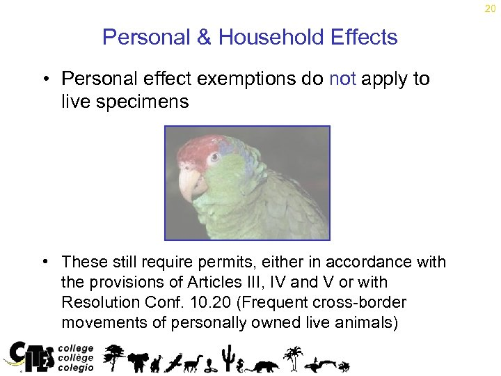 20 Personal & Household Effects • Personal effect exemptions do not apply to live