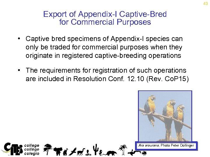 43 Export of Appendix-I Captive-Bred for Commercial Purposes • Captive bred specimens of Appendix-I