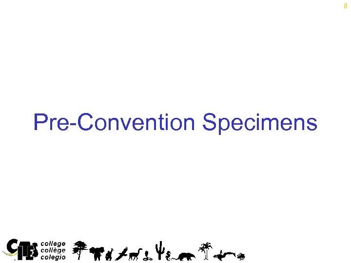 8 Pre-Convention Specimens