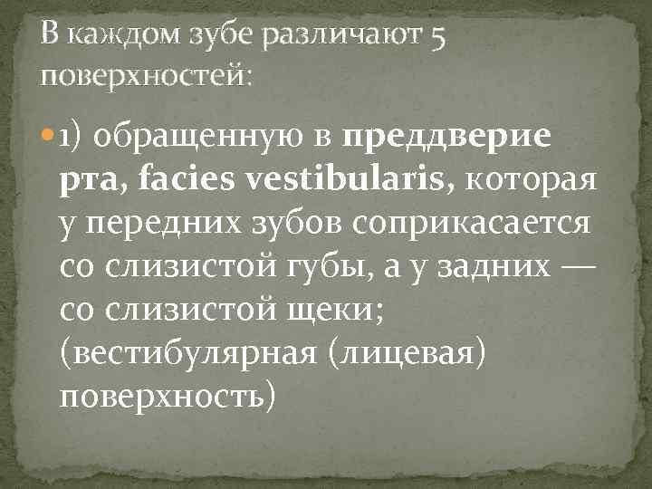 В каждом зубе различают 5 поверхностей: 1) обращенную в преддверие рта, facies vestibularis, которая