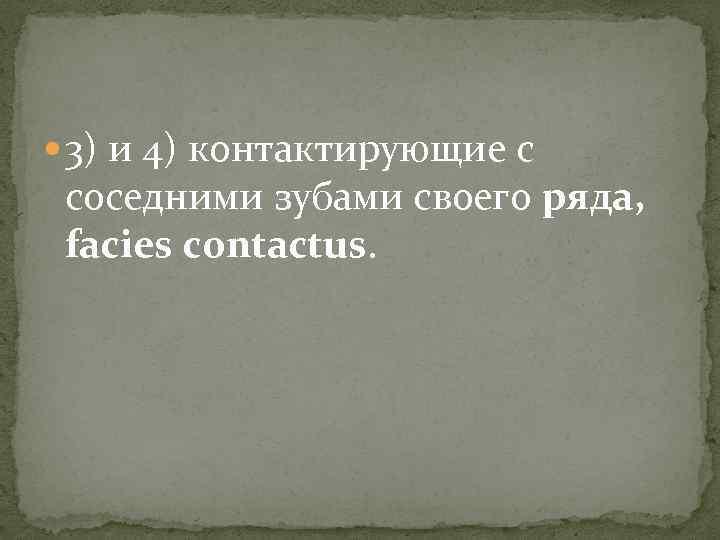 3) и 4) контактирующие с соседними зубами своего ряда, facies contactus.