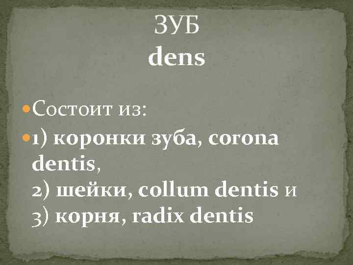ЗУБ dens Состоит из: 1) коронки зуба, corona dentis, 2) шейки, collum dentis и